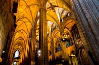 The Ceiling inside the La Seu Cathedral in Barcelona, Spain.
