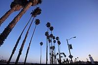 Promenade at sunset in Santa Barbara lighthouse, California, USA