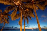 Twilight, Waikiki, Honolulu, Oahu, Hawaii.