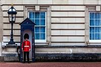 Palace Guard, Buckingham Palace, London, England.