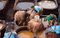 Fez Morocco old Tannery called Chouara Tannery which is almost 1000 years old from above of tannery vats with color dyes.