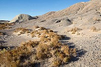 Death Valley landscape of rugged, parched terrain and sage brush.