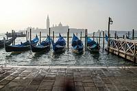 Morning Gondolas, Venice, Italy