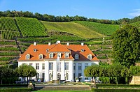 Schloss Wackerbarth Manor in Radebeul near Dresden, Germany, the seat of the Saxon State Winery.