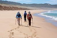 Bushwalkers in Croajingolong National Park. Victoria, Australia.