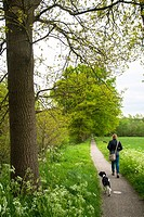 woman with friese staby dog at small path big tree and grassland at holland