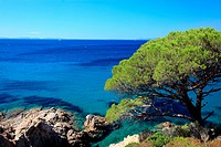 Beautiful coast around La Croix Valmer, Var, Côte d´Azur, French Riviera, France