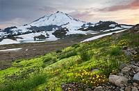 Mount Baker 10,781 ft (3,286 m), Mount Baker Wilderness Washington.