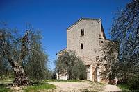 St. Antimo abbey, Siena province, Tuscany, Italy, Europe.