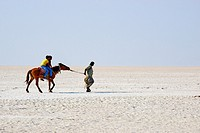 India, Gujarat, Kutch, Rann of Kutch, local turist visiting the salt desert.