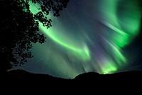 Norway, Nordland, Lofoten islands, Vestvagoy island, northern lights (aurora borealis).