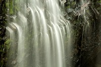 The Narada waterfall in Mt. Rainier National Park yields dozens on small waterfalls as it descends the cliffs.