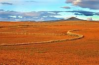 Aragon fields. Spain.