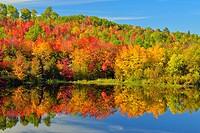 Autumn foliage reflected in the Vermilion River, Greater Sudbury, Ontario, Canada.