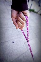 closeup of hand holding a leash dog walking on the street