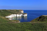 Selwicks Bay, Flamborough Head, Flamborough, East Yorkshire, England, UK.