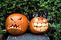 Carved Pumpkins.