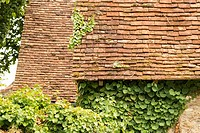 France, Midi-Pyrénées, Carrenac. Rooftops and ivy covered walls in quaint village in the Dordogne Valley.