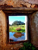 Window mill, Búrdalo river, miajadas, Cáceres, Extremadura, Spain