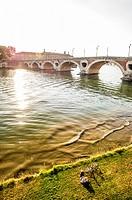 Resting near Pont Neuf in the riverside of the Garonne river, Toulouse (Haute-Garonne Department, Midi-Pyrénées Region, France).