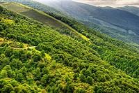 Palombera Mountain Pass. Saja-Besaya Natural Park. Cantabria. Spain.
