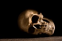 Human skull with dark background. Concept of death, horror and anatomy. Spooky halloween symbol.