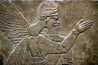 Assyrian relief sculpture panel of a protective spirit from Nimrud, Iraq. 865-860 B. C North West Palace, Room Z. ref: British Museum Assyrian Archaeo...