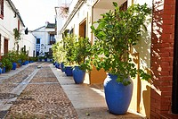 Córdoba, Andalusia, Spain, Europe.