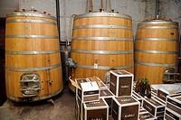Large oak fermentation barrels of Pinot Grigio at Kabaj Morel Guest House and winery Slovrenc Dobrovo Brda Slovenia.