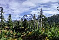 WASHINGTON - Mount Shuksan in North Cascades National Park. Fall colours are abundant in the vegetation.