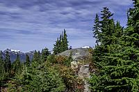 WASHINTON-HIking trails at Mount Baker with a carpet of fall colours in the vegetation.