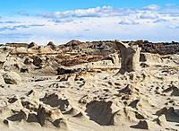 Ischigualasto Provincial Park, UNESCO World Heritage Site, San Juan Province, Argentina.