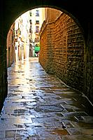 street with arcade, Ciutat Vella, Barcelona, Catalonia, Spain