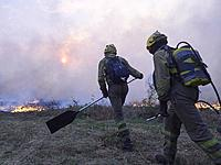 Forest fire in the mountain of Lugo, brigadistas, agents, aerial means and forest firefighters, try to control the advance of fire, but the strong win...