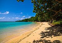 Champagne beach with turquoise water, Sanma Province, Espiritu Santo, Vanuatu.