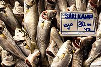 Display of Fresh Fish, Galatsaray Fish Market, Beyoglu, Istanbul Turkey.