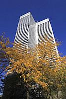 Canada, Quebec, Montreal, Place Ville Marie, autumn foliage,.