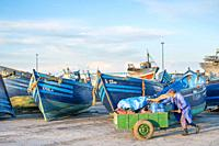 Morocco, Marrakesh-Safi (Marrakesh-Tensift-El Haouz) region, Essaouira. A man pushes a cart past fishing boats in the fishing port at dawn.