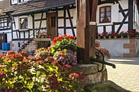 half-timbered houses with flower decoration and old well of Hunspach in the autumn, small village in Northern Alsace, North Vosges, France, member of ...