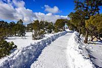 Grand Canyon National Park, South Rim path at Winter, Arizona.