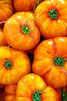tomatoes, market, Catalonia, Spain
