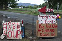 Family-run roadside fruit orchard business at Bacchus Marsh, west of Melbourne, Victoria, Australia.