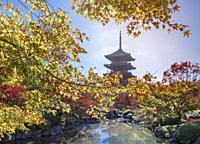Japan , Kyoto City, To-Ji Temple.