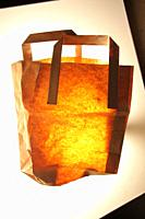 shopping paper bag