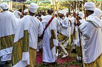 Ethiopian Orthodox Christian Priests and Deacons Celebrate The Three Day Festival Of Timkat (Epiphany) At Kidist Mariam Church, Addis Ababa, Ethiopia.