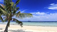 Tropical beach with palm trees in Phi Phi Don Island in Krabi, Thailand.