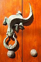 Close-Up shoot of an old wooden door and iguana shaped door knocker at the historic center, Cartagena de Indias, Bolivar, Colombia, South America.