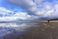 North Sea beach near Zandvoort, province of North Holland, Netherlands.