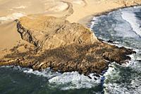 Cape Fur Seal (Arctocephalus pusillus) colony at the coast of the Namib Desert. Aerial view. Namib-Naukluft National Park, Namibia.