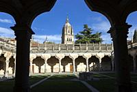 Patio de las Escuelas Menores (courtyard). University of Salamanca. Salamanca. Castile-Leon. Spain